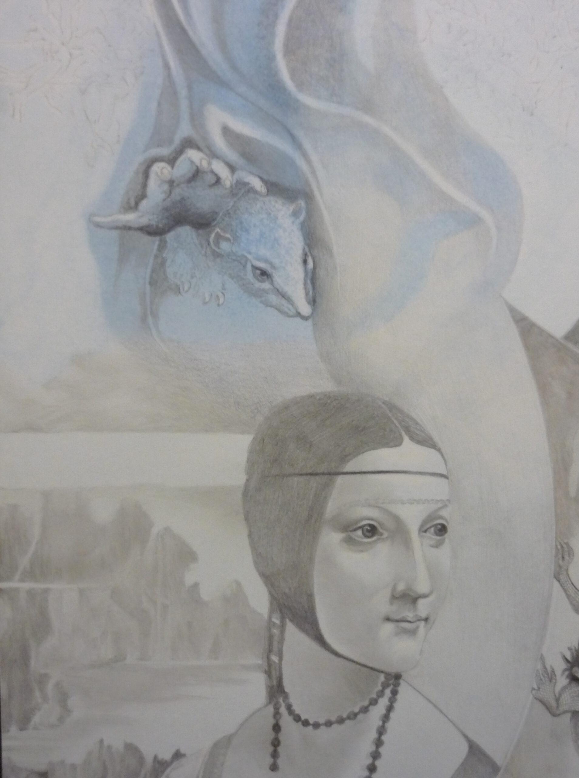 Da Vincis Schönheiten